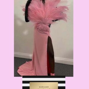 Pink Coutre Dress with feathers from Madaame